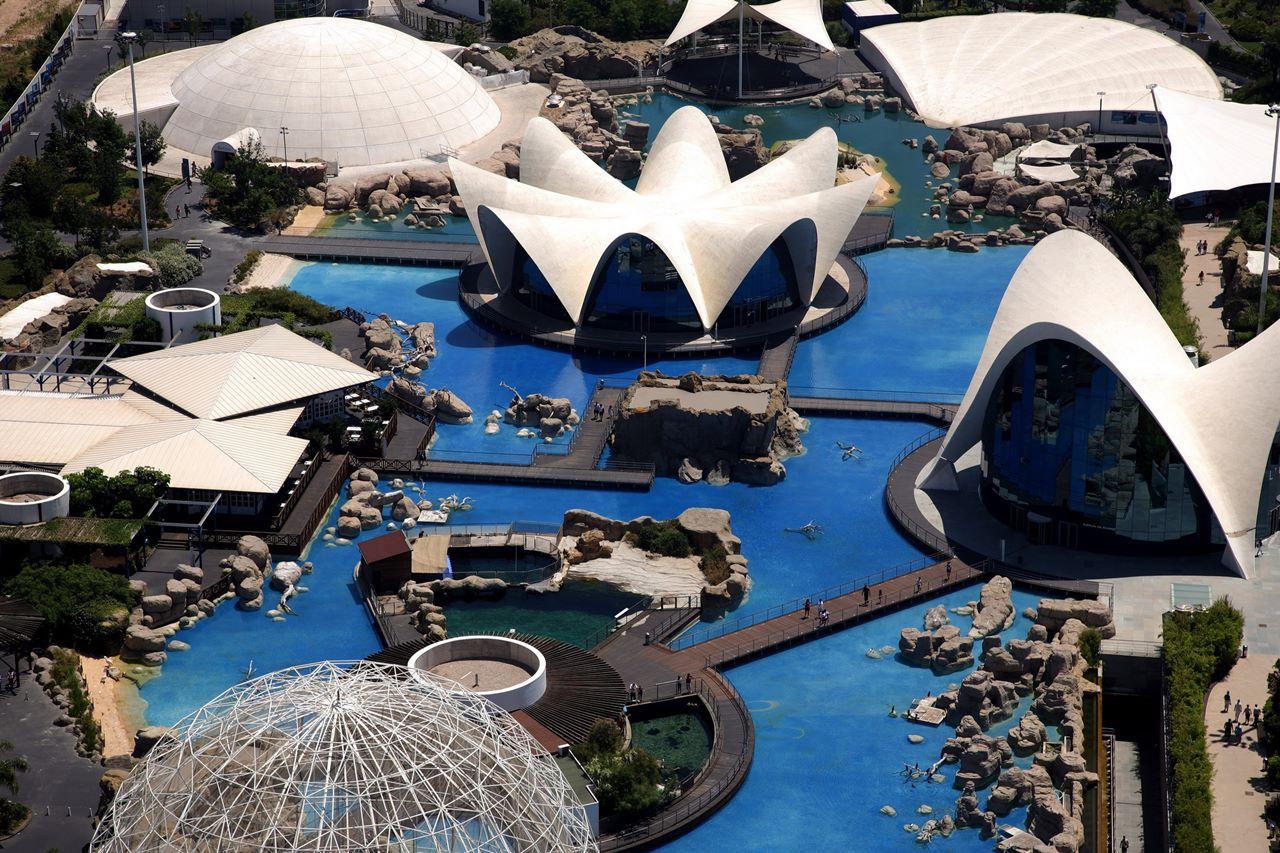 Tourist Guide To L'Oceanografic Ocean Museum Spain - XciteFun.net
