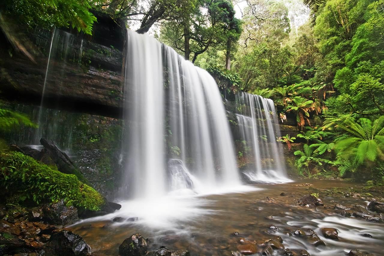 Tourist Guide To Mount Field National Park Australia