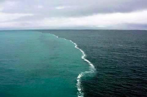 Where Two Ocean Meets But Dont Mix