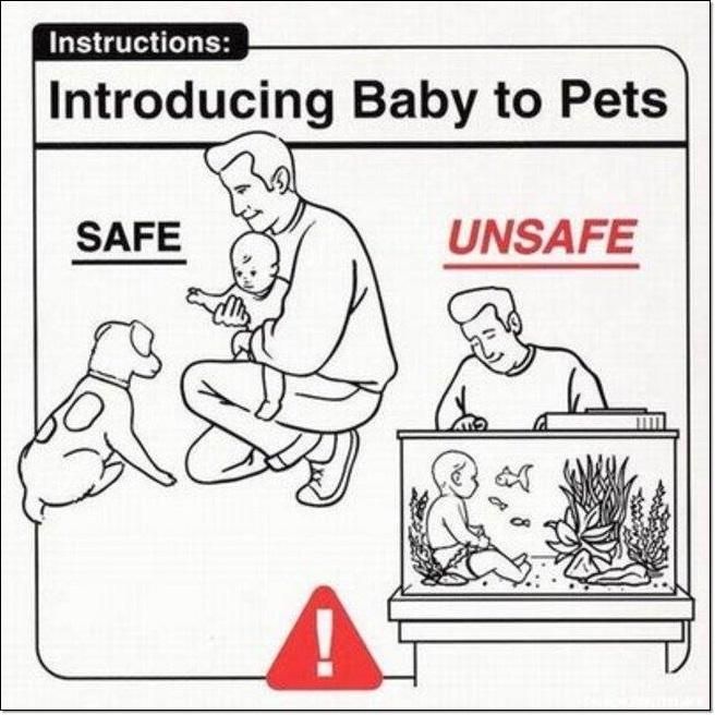 Baby Handling Tips