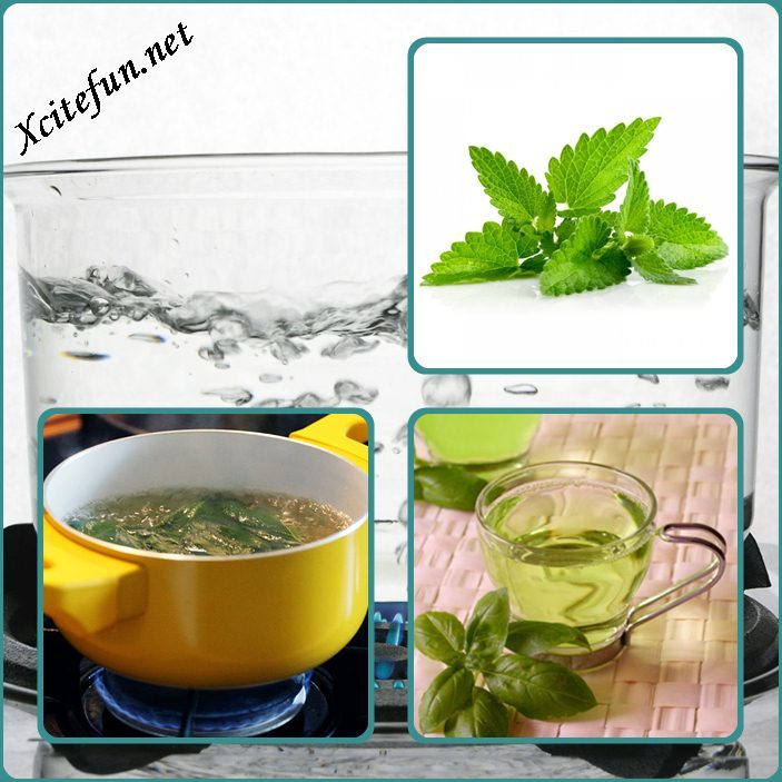 how to use spearmint leaves