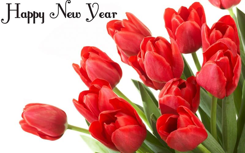 Happy New Year With Roses